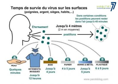 Temps de survie du virus